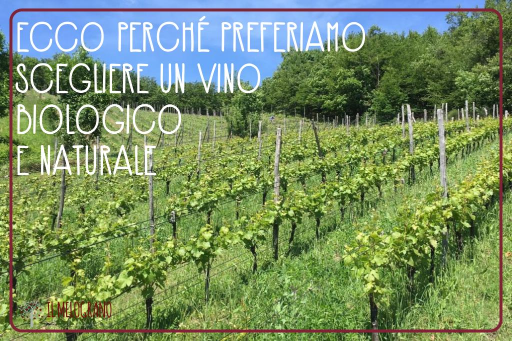 vinobiologico-agricolturaintensiva-biologico-vino-vinobiodinamico-biodinamico-naturale-vinonaturale-pizzeriapalmanova-udine-pizzeriamelogranopalmanova