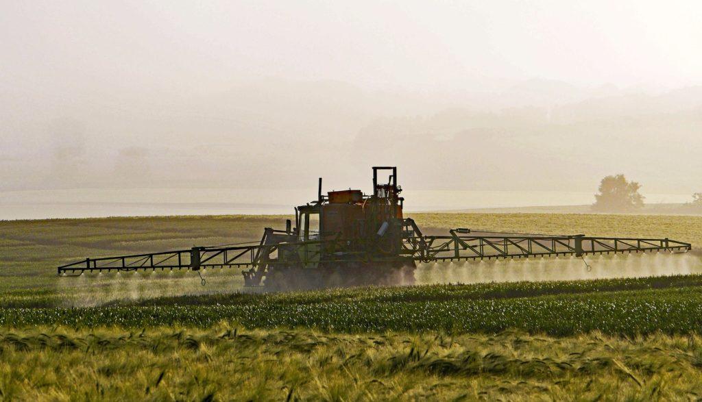 agricultura-glifosfato-pastaitaliana-pasta-italiana-grano-italiano-granoitaliano-udine-ristorantepalmanova
