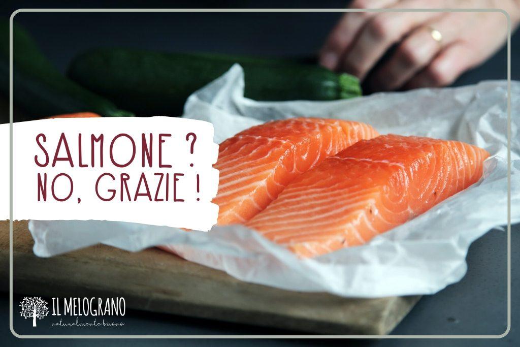 allevamento intensivo salmone-allevamento intensivo-salmone-il melograno palmanova-il melograno trieste