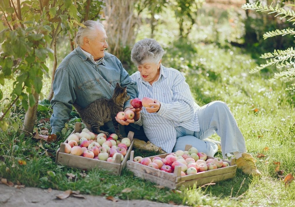 dieta della longevità-longevità-palmanova-udine-alimentazione centenari
